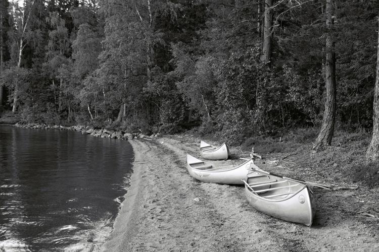 Canoes Gallo, Sweden. Part surv - garethwi | ello