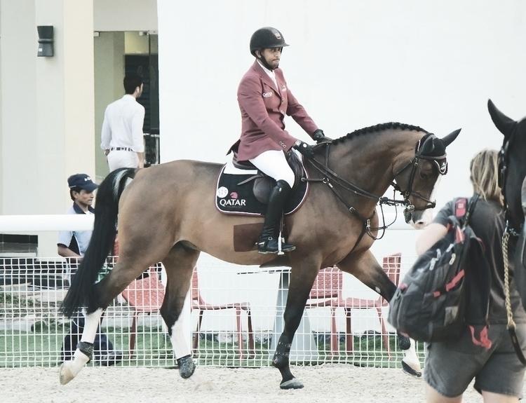 horsefun - gabrieldascalu | ello