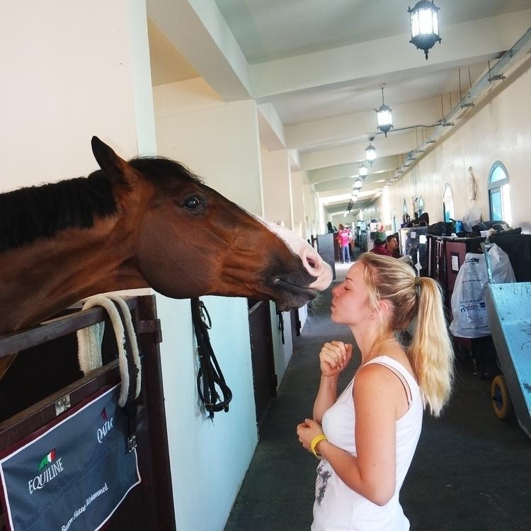 Horsefun, kissingmachine - gabrieldascalu | ello
