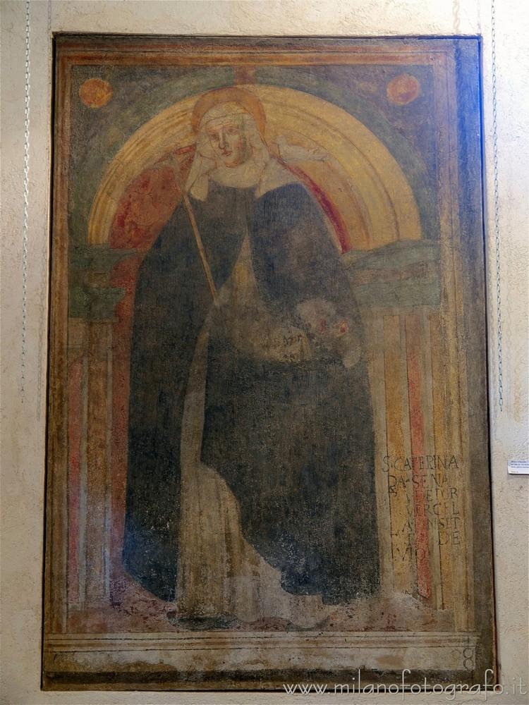 Milan (Italy): Fresco Saint Cat - milanofotografo | ello