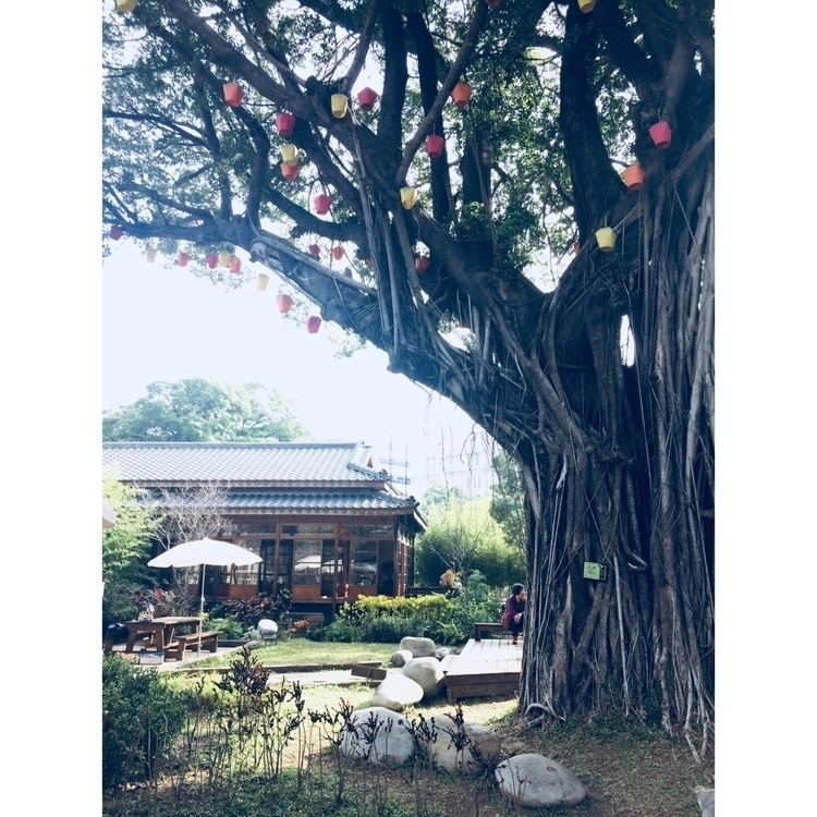 Taiwan Taichung - wilmahuang | ello