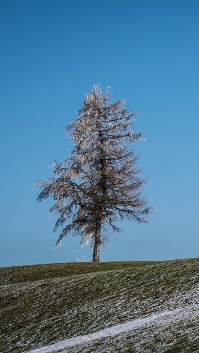 Bavarian winter countryside - jonathonwilliams   ello