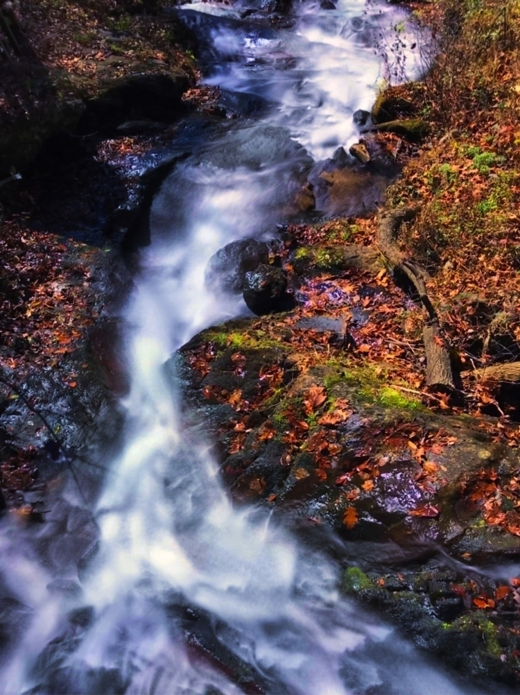 Amicolola Falls - wabearultra | ello