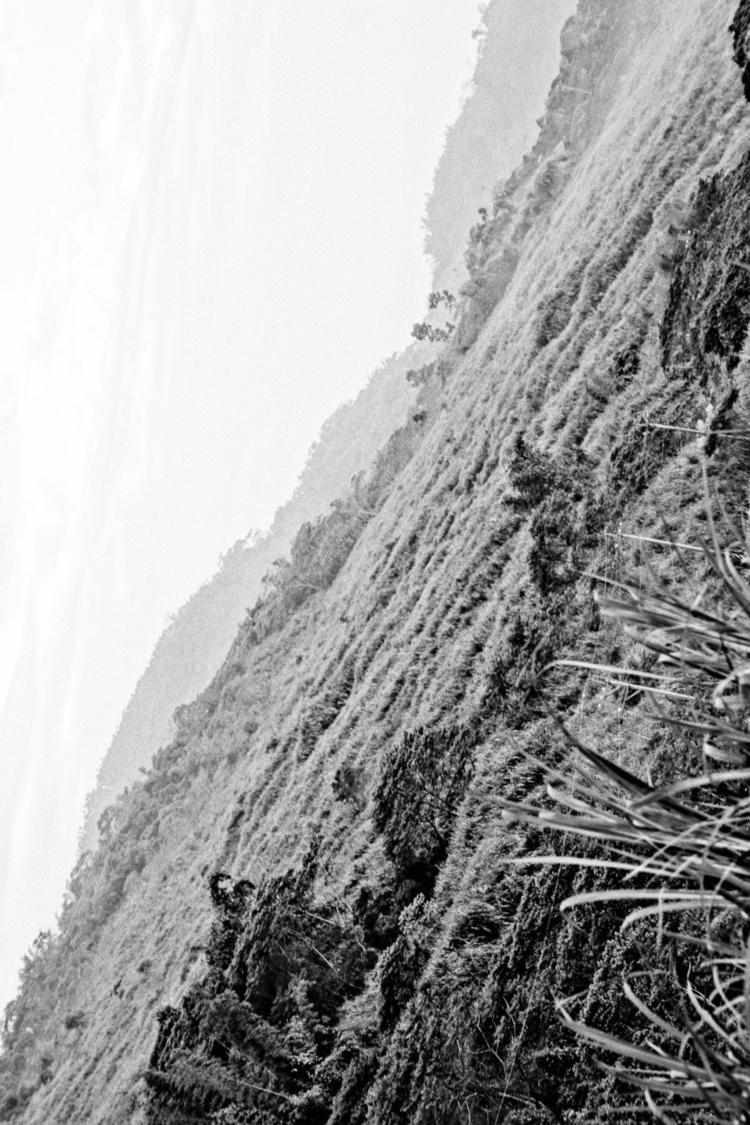 Scenery Generation , landscape  - chiangyuchieh | ello