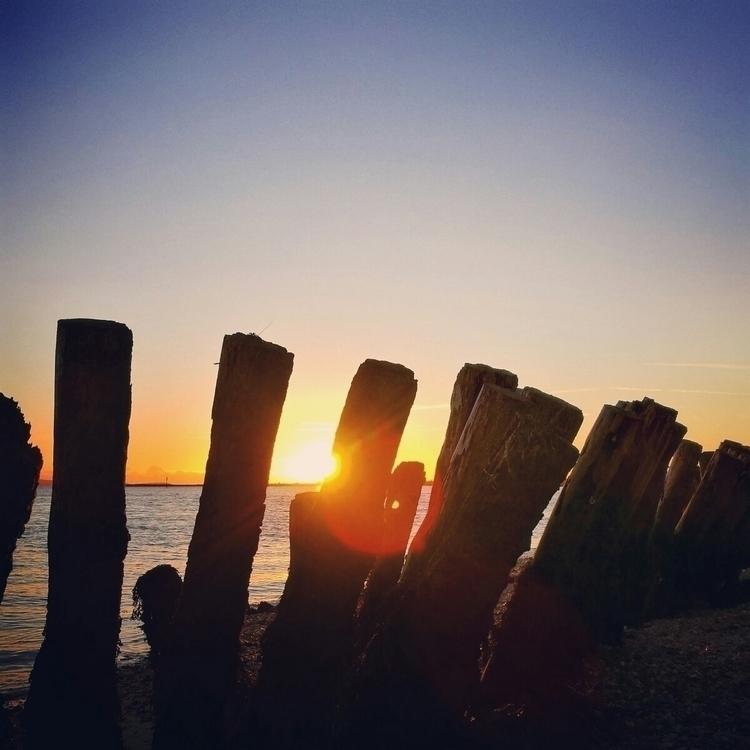 Sun bursts toothy grin groynes - estelleclarke | ello
