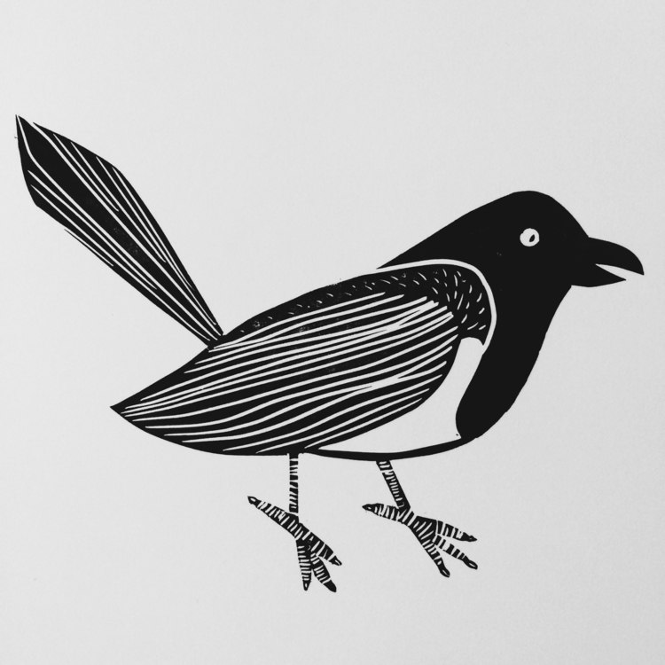 magpie, ekster, illustration - studiomalu | ello