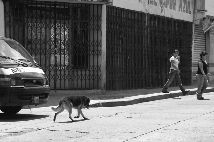 stop - Quetzaltenango, Guatemala - arturogodoym | ello