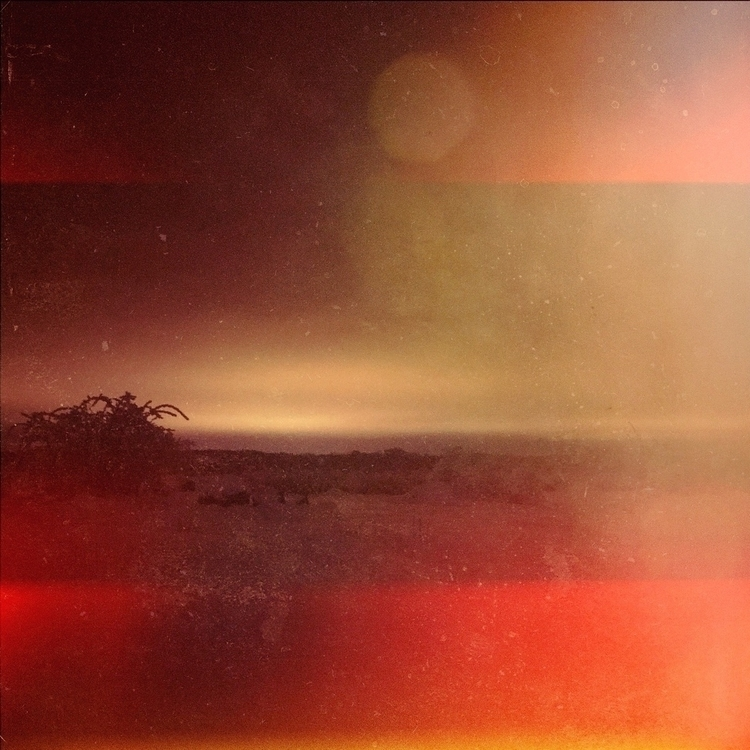 detour, midnight, sunset, nature - yogiwod | ello