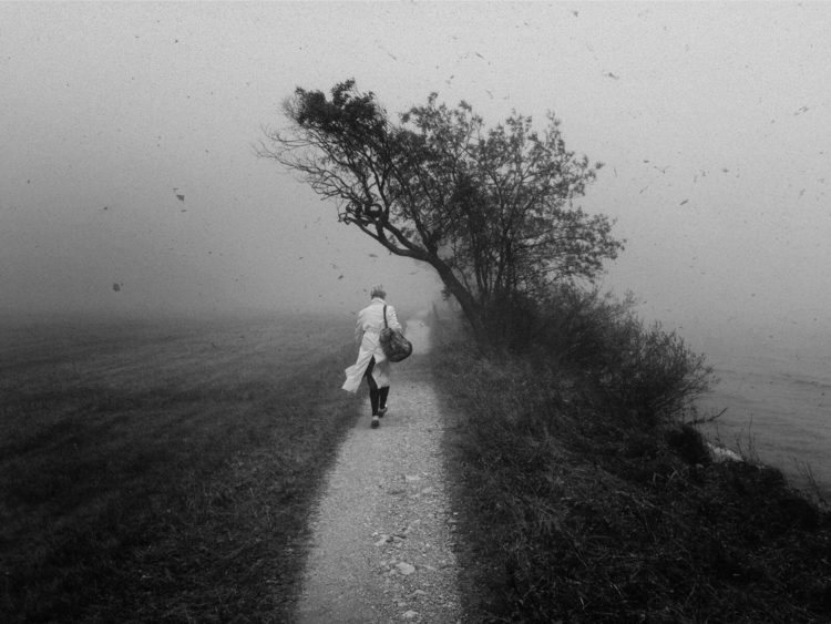 fog - blackandwhite - lubaluft | ello