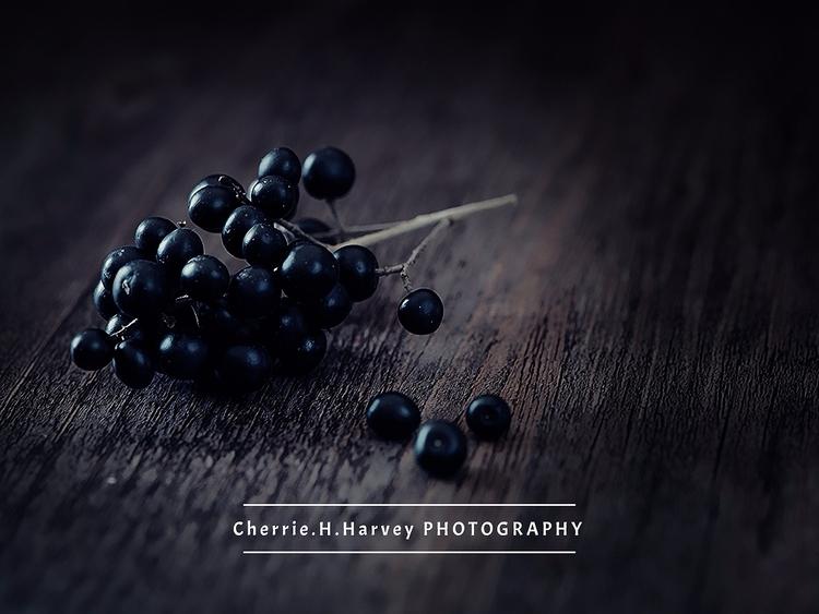 fully customizable photographer - artlikesyou | ello