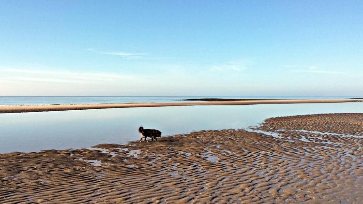 wind, flat sea - Northseabeach, beach - seabreezzze | ello