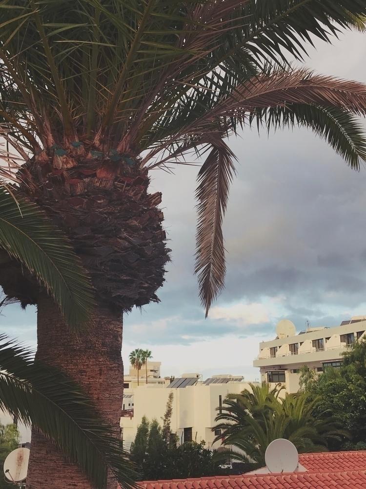 Plya de Las Americas, Tenerife - an4i | ello