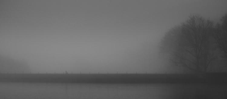 Bonjour Tristesse - photography - georgie_pauwels | ello