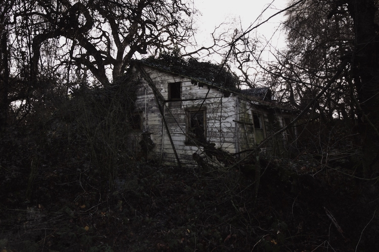 Skyler Brown (  - abandoned, photography - skyler_brown | ello