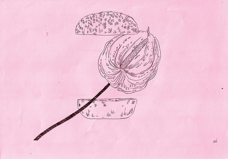 art, drawing, flower, burger - linsshit | ello
