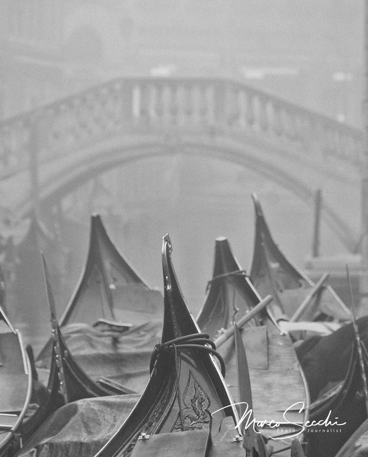 Venice - Fog II - msecchi | ello