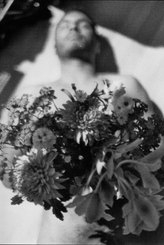 Fiori di Loto - Rebecca Dorothy - rebeccadorothy | ello