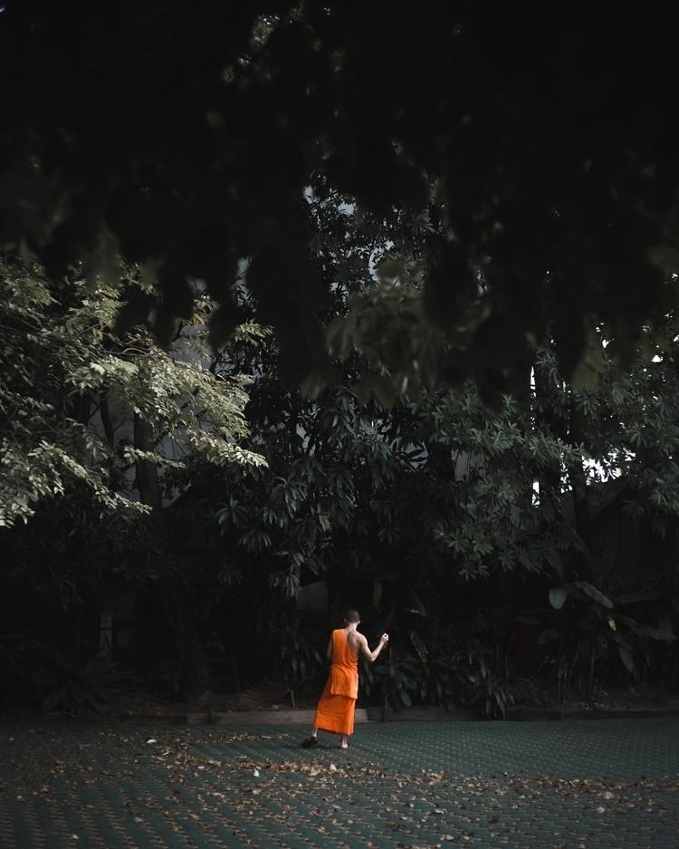 contrast // chiang mai - brianxplores | ello