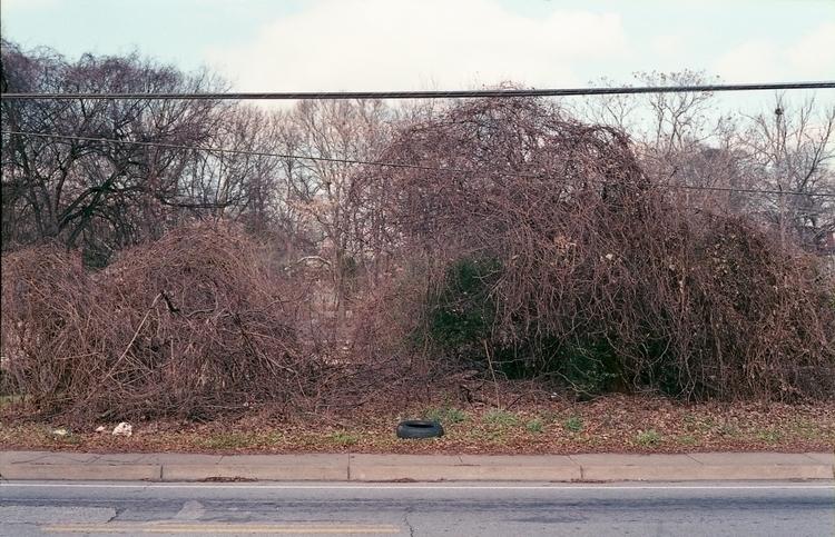 Memorial Drive, Atlanta Fujifim - rebelbor | ello