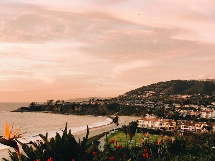 Beach Vibes - austinolea | ello