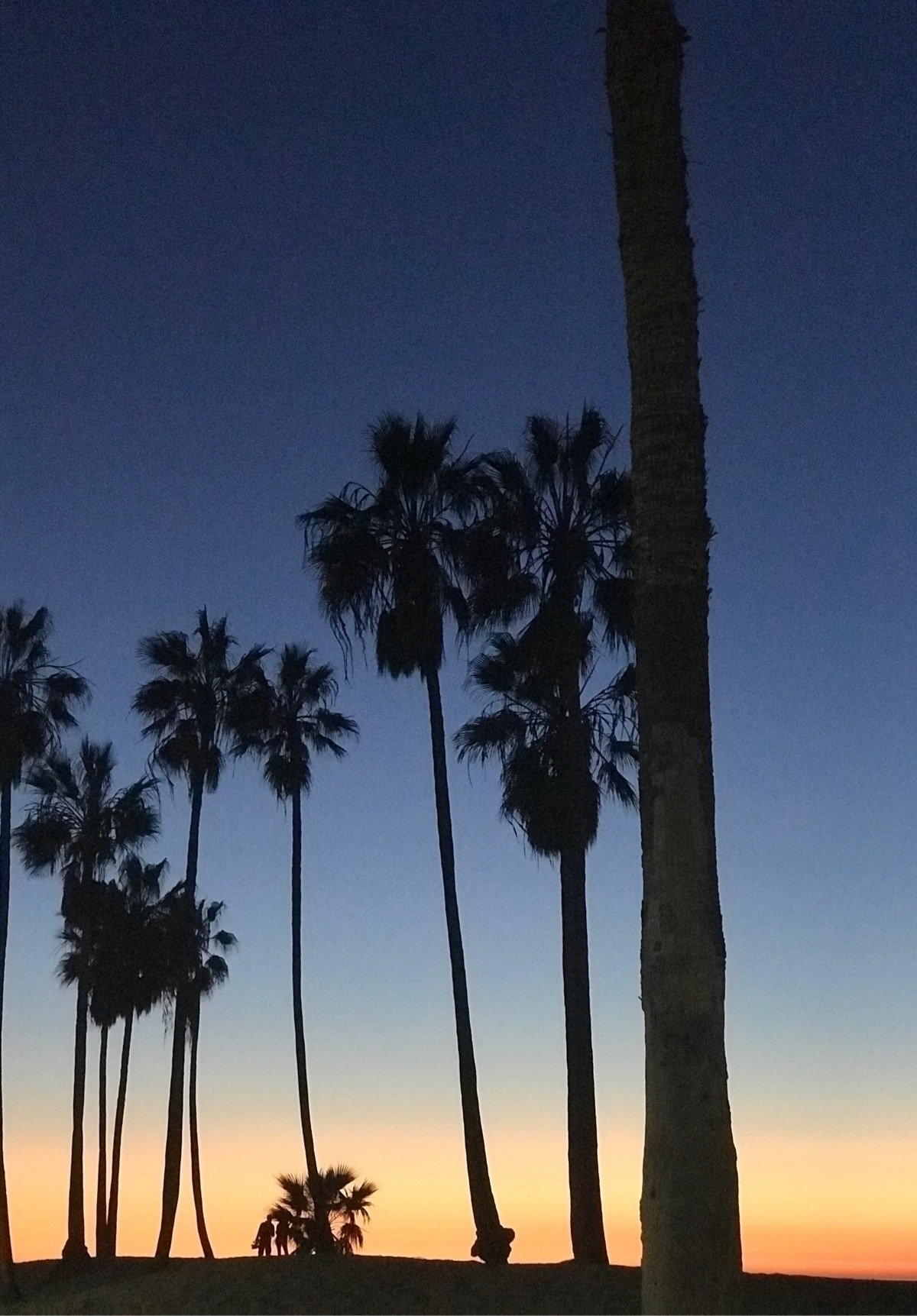 raw photo Venice beach - ello, sunset - sennari | ello