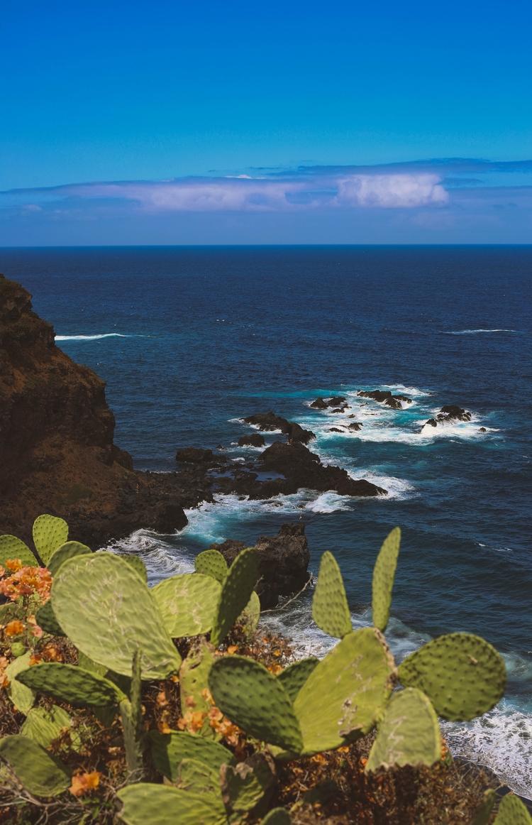 Tenerife Pears - Canary Islands - mlwphotographyllc | ello