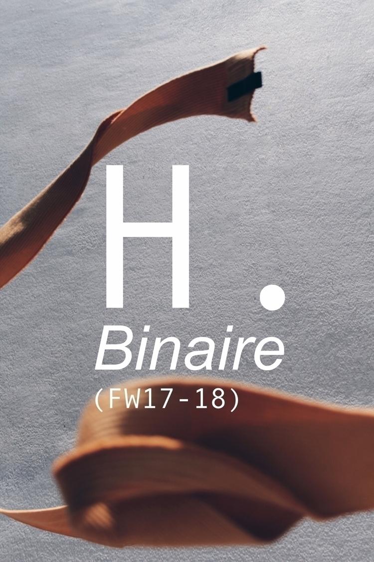 Binaire FW18 Photo - hectordelap | ello