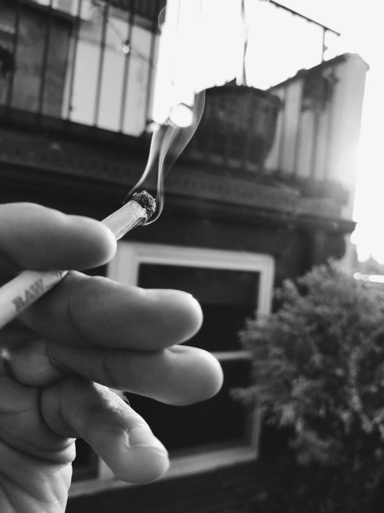 saturdaze - cannabis, weed, cannabisculture - thisisjcobb | ello