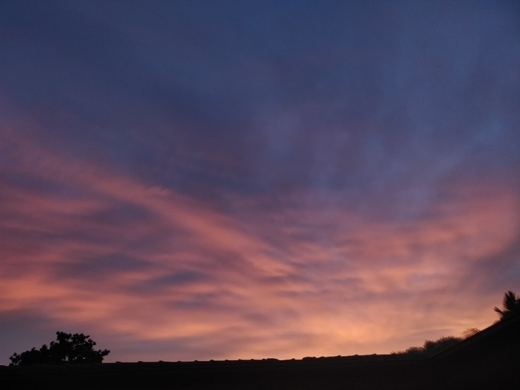 pink sky - optkl - arj_sng | ello