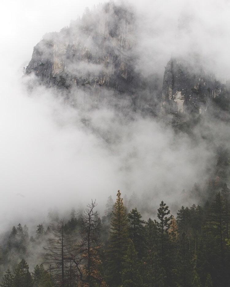 Foggy Yosemite - dillonmendez | ello