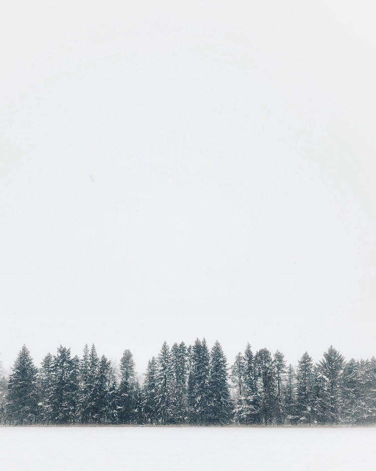 Minimal Winter - robertprins | ello