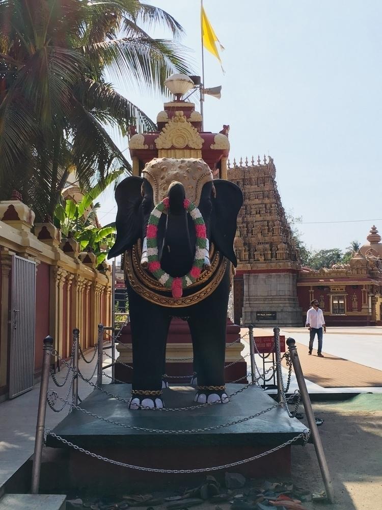 Mangalore Kudroli Shot local te - krithikajgowda | ello