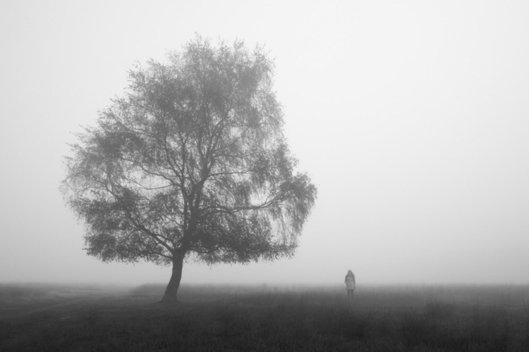 favourite photographs. morning  - lizejansen | ello