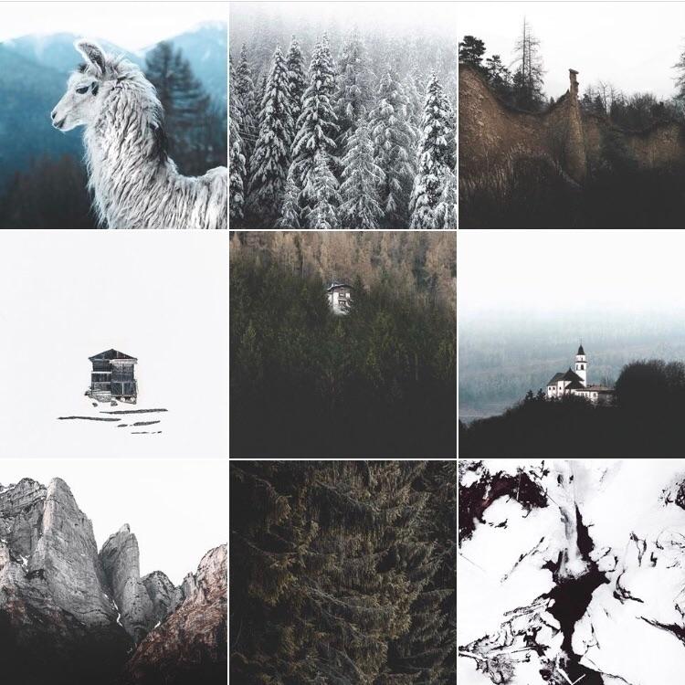 Instagram ⇨ - douglasfir | ello