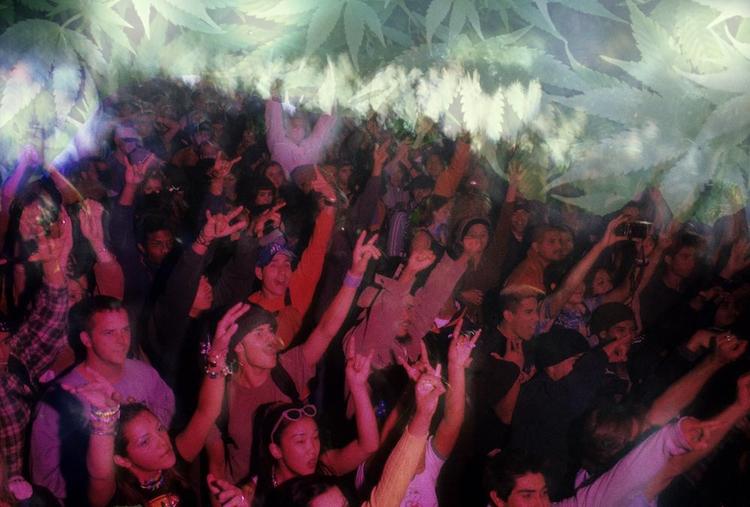 Marijuana Rave Culture - ministryofcannabis | ello