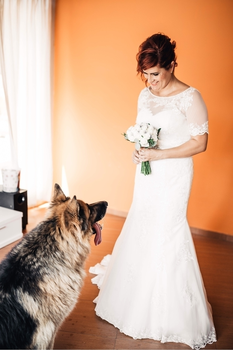 Wedding picture Instagram - dog - lasfotosdexus | ello