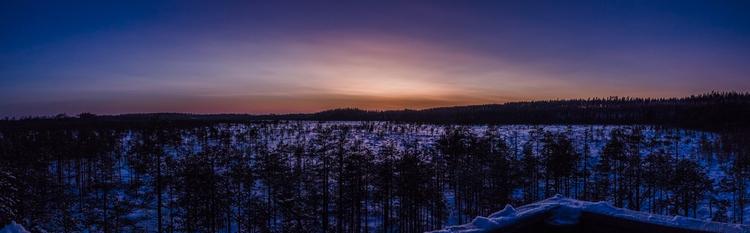 swamp, sunset - toonie74 | ello
