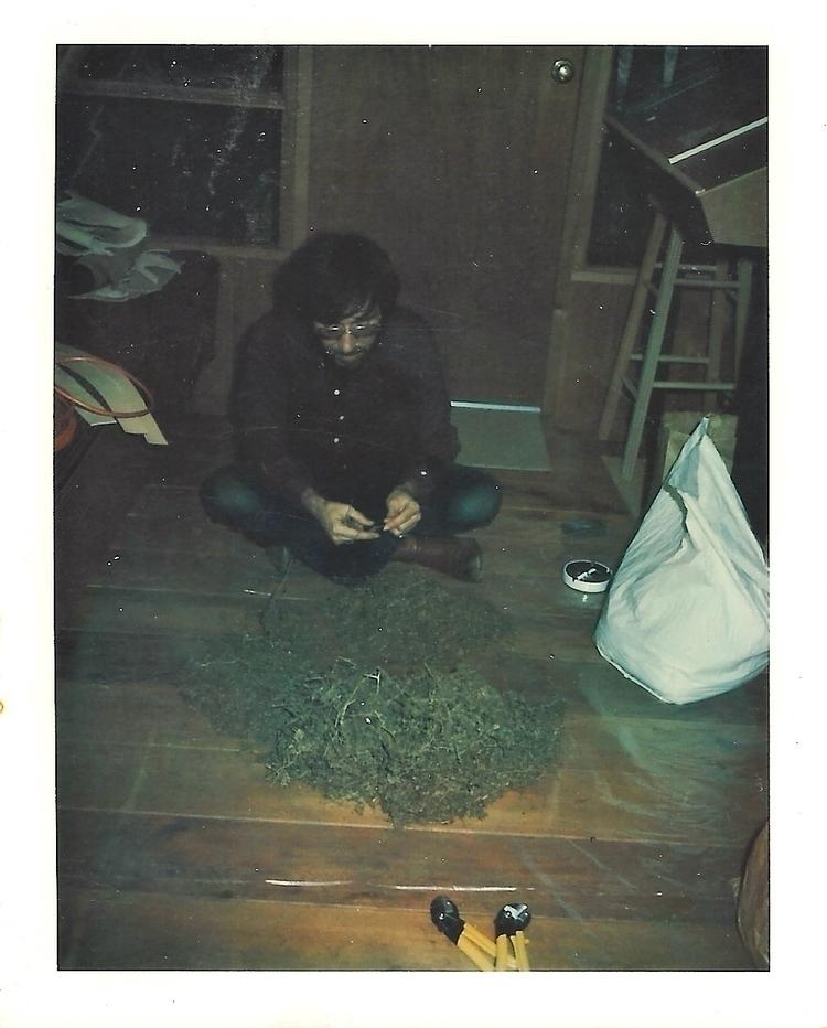 San Francisco Hippie Marijuana  - ellocannabis | ello