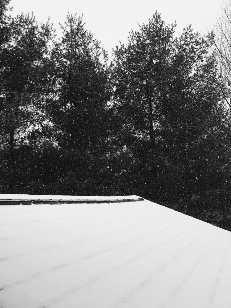 :snowflake:️ - kingky | ello