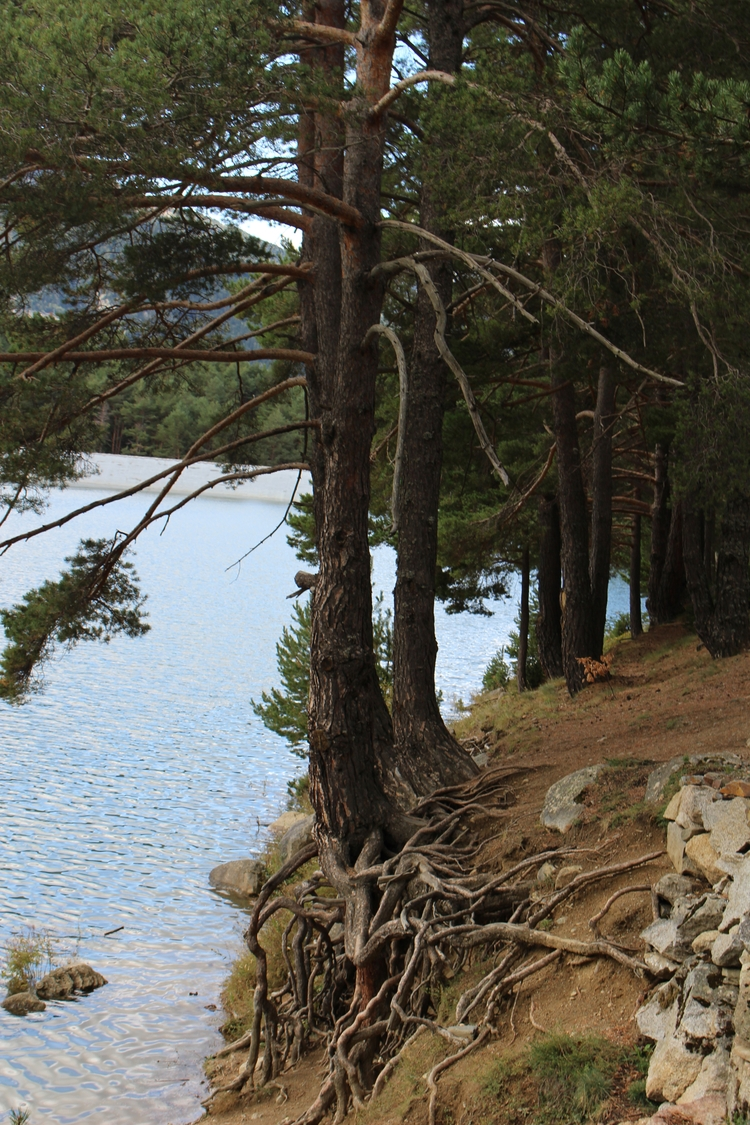 Awesome lake Andorra - mountains - hector_artist   ello