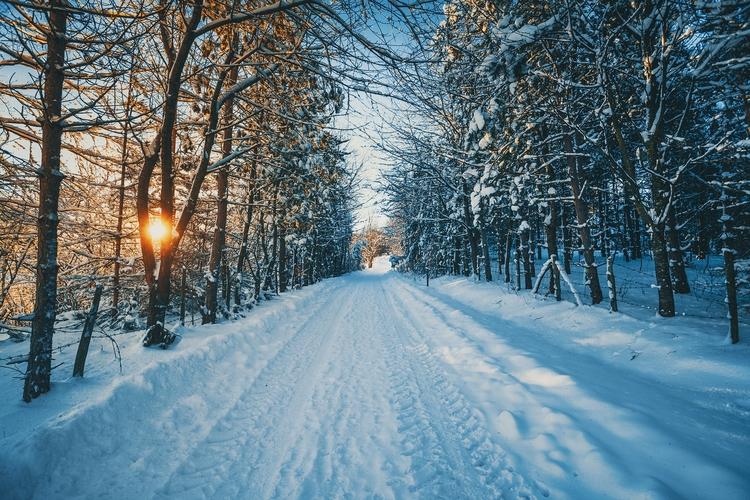 favorite images winter - landscape - dimitrijetanaskovic   ello