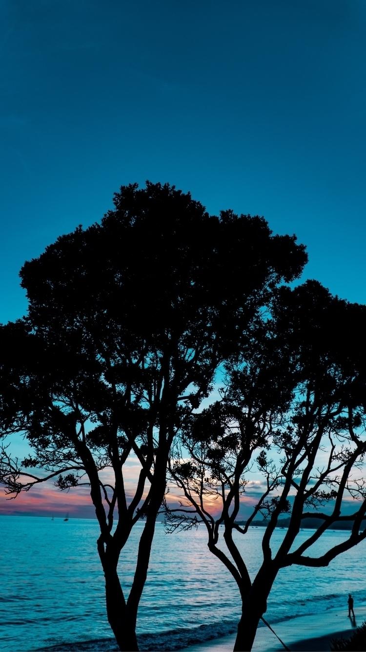 Silhouette madness - photographer - brycebowl   ello
