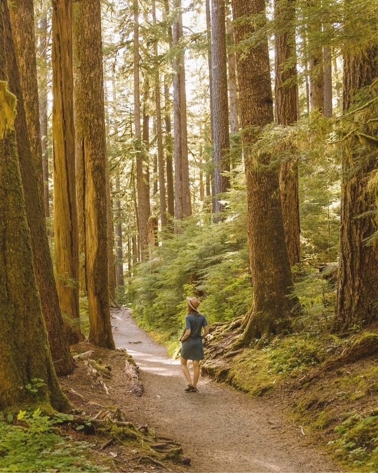 Olympic National Park featuring - kristenmayx   ello