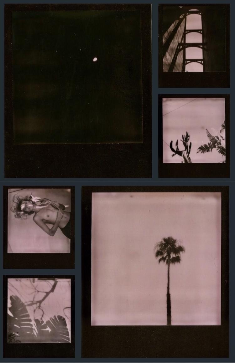 Pink Polaroid Series - polaroids - vronsol | ello