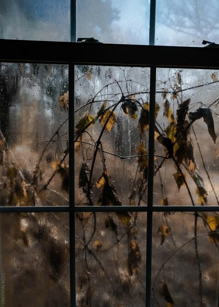 photography, abandoned, moody - greysonrose | ello