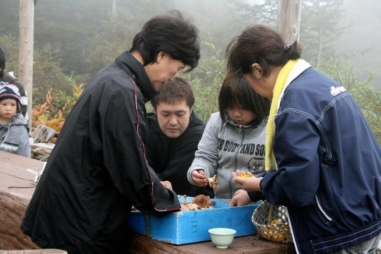 Mushroom picking. Mount Fuji, J - mrulster | ello