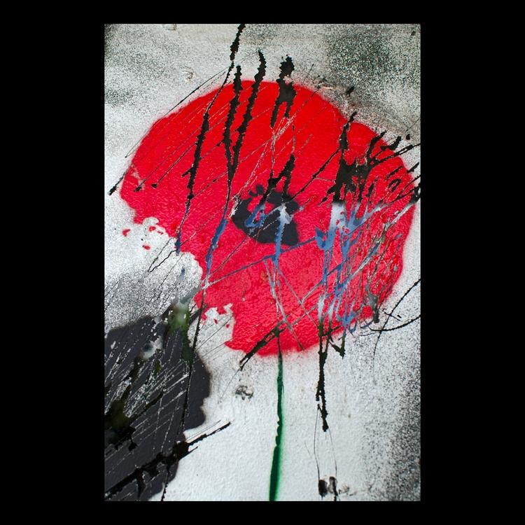 poppy′ 140117 - photography, texture - matthewschiavello | ello