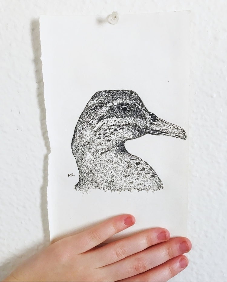 Mallard stippling - kingratart | ello