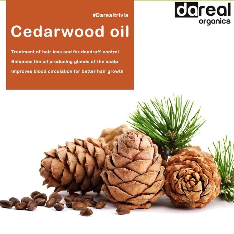 Cedarwood - power nature - darealorganics - darealorganics | ello