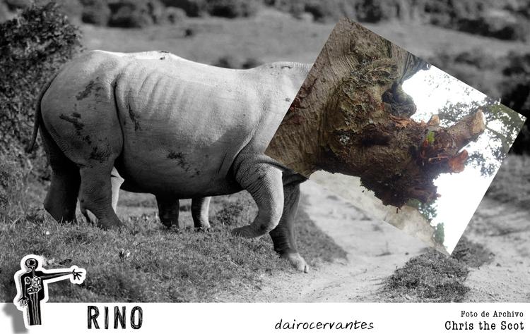 RinoTronco DC - collage, conceptual - dairocervantes | ello